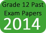 Grade 12 Past Exam Papers 2014