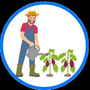 B-BBEE Agri-Business
