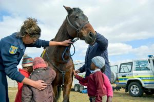 Community policing horse handlers